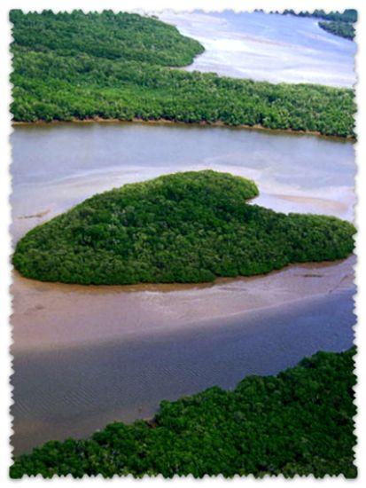 Island-Vase-Barris-in-Brazil