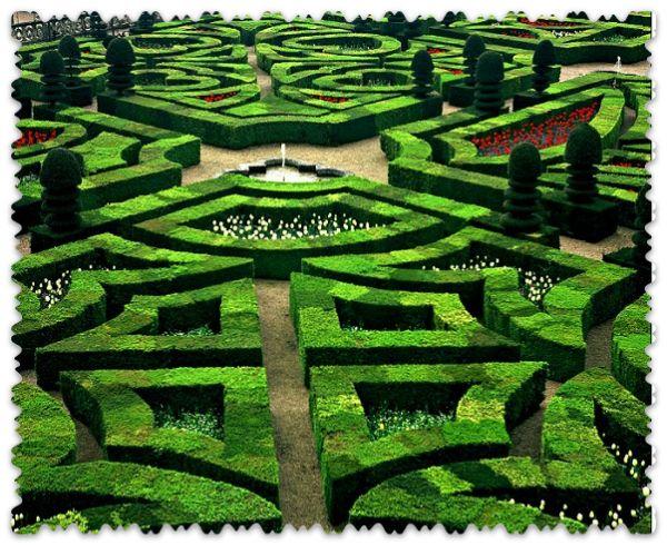сад замка Вилландри