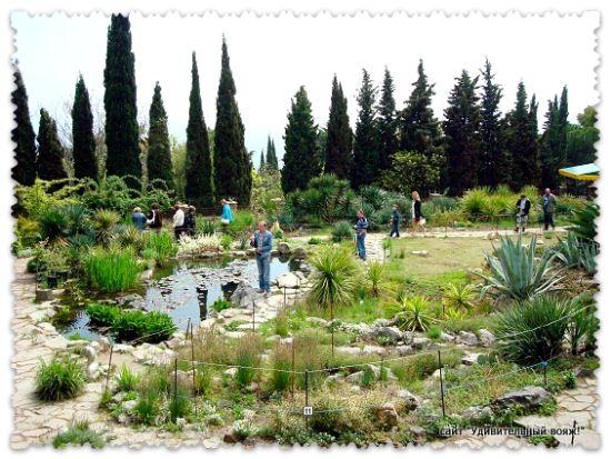 oranzhereja-v-botanicheskom-sadu1