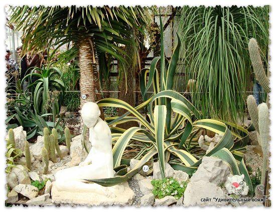 Оранжерея ботанического сада в Крыму