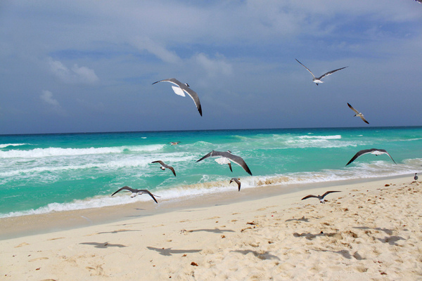 Мексика, Карибское море