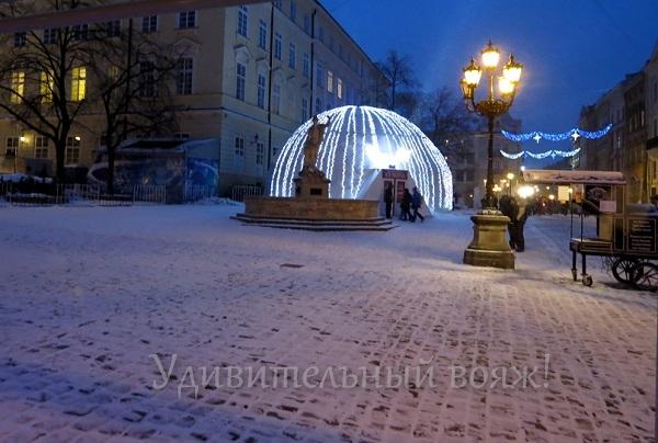 Дом ледовых скульптур во Львове