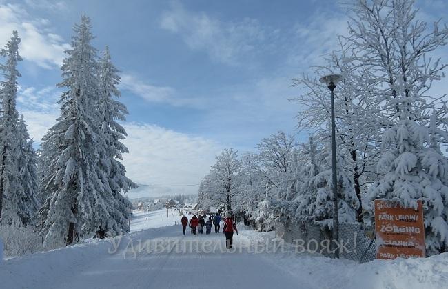 зимние пейзажи Закопане