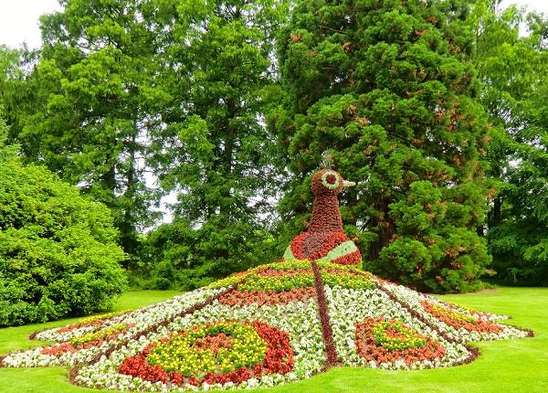 цветочные композиции на острове цветов Майнау