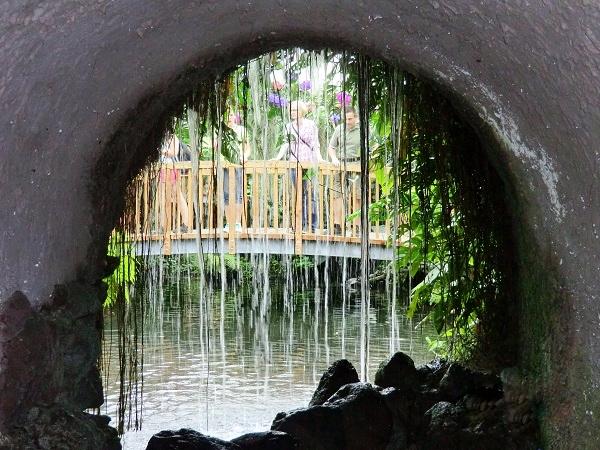 на острове цветов Майнау
