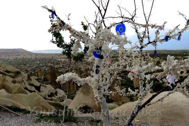 дерево желаний в Каппадокии
