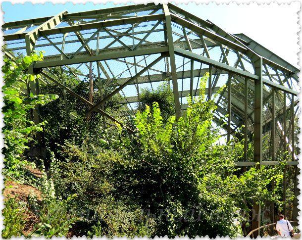 павильон для птиц в Пражском зоопарке