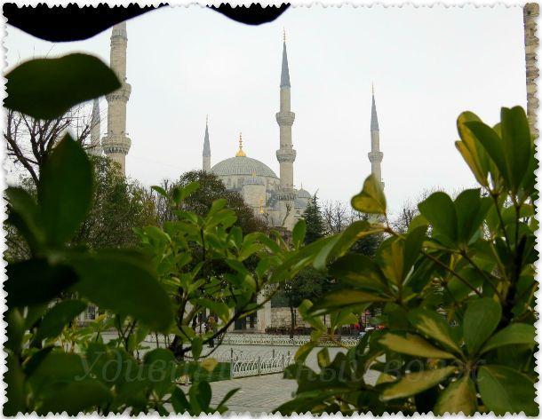 поездка в Стамбул на три дня