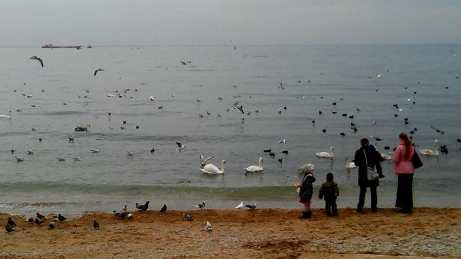1-й городской пляж в Феодосии