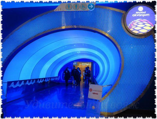 вход в аквариум Стамбула