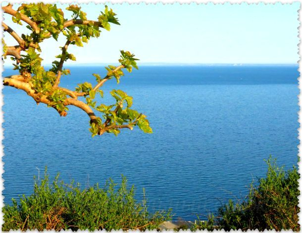 вид с горы Митридат в Керчи