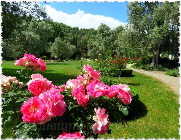 park «Paradiz»(«Ajvazovskoe»)