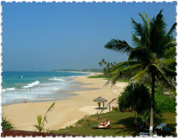 отзыв туриста о Шри-Ланке