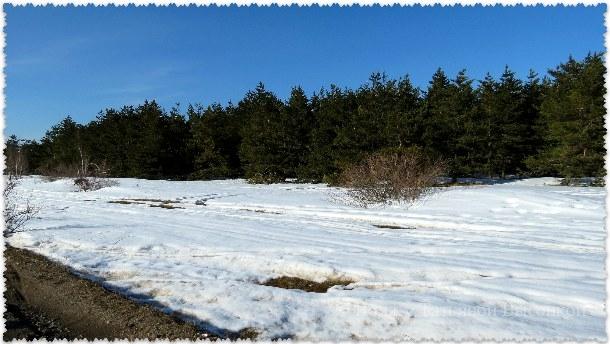 gora Aj-Petri v marte