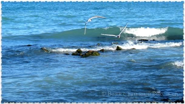Chernoe more v marte