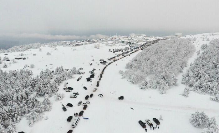 na-aj-petri-v-yanvare-2019