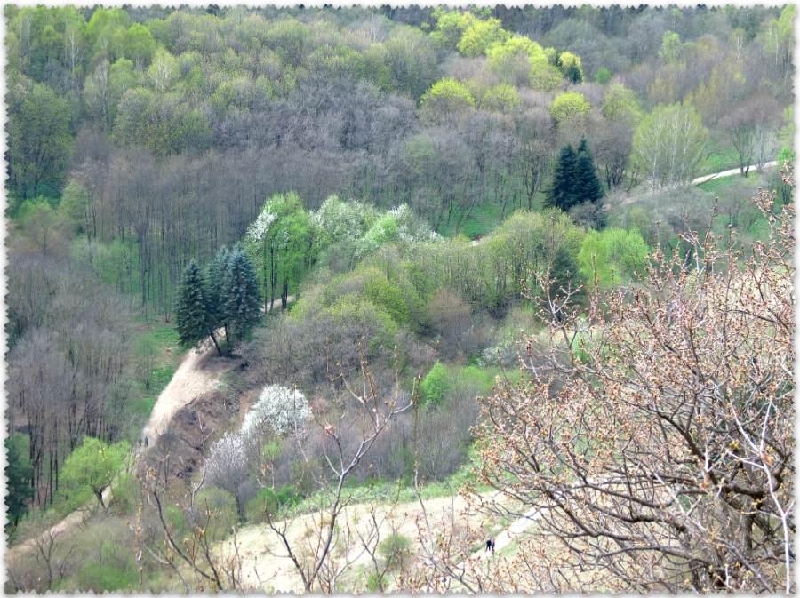 Verhnij park Kislovodska v mae