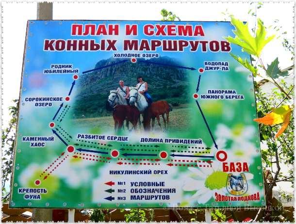 конные экскурсии в с. Лучистое