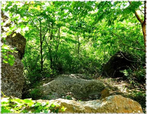 Kamen' Varlej