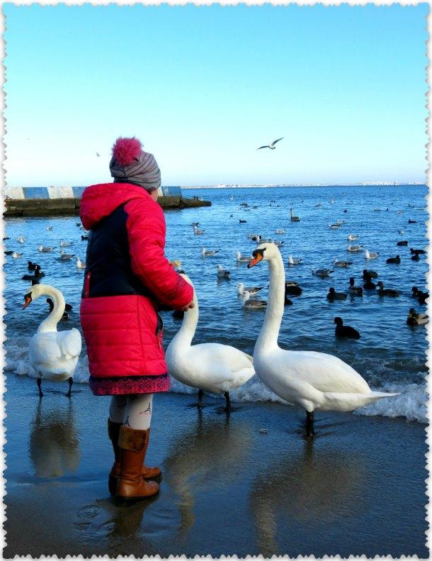 zima v Feodosii