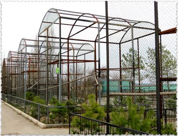 закрытый парк-львов в Крыму
