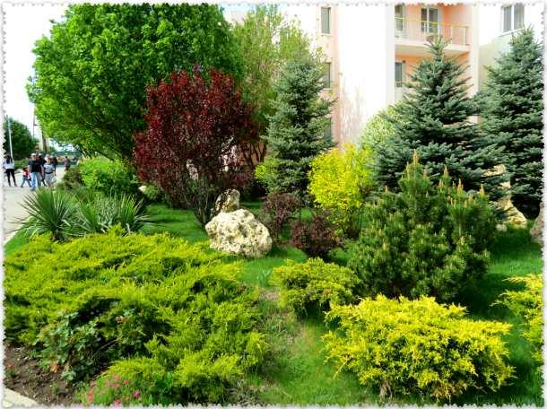 park l'vov Tajgan v aprele