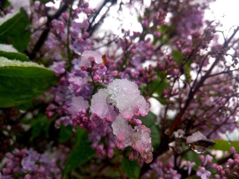 kakaja pogoda v Krymu v aprele
