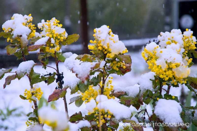 sneg v Krymu v aprele