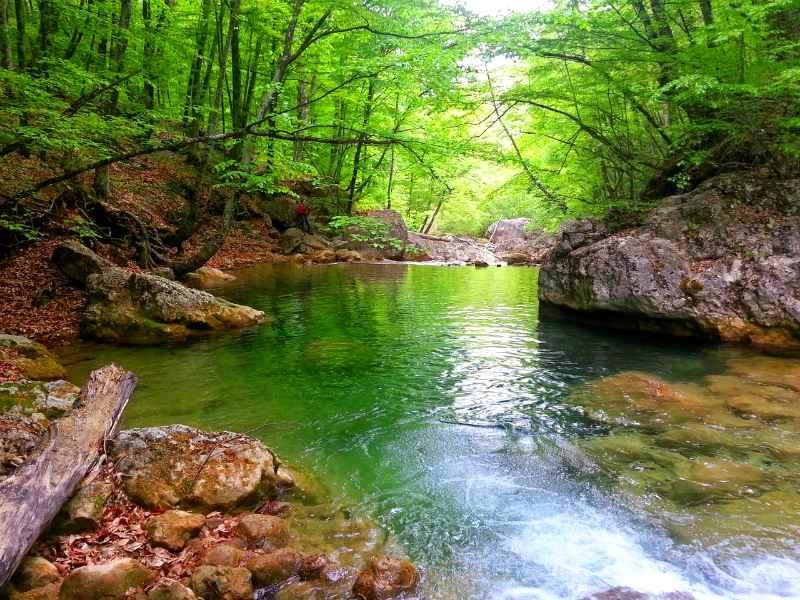 reka Kokkozka