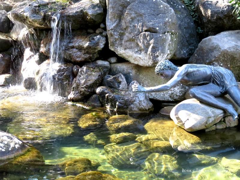 Narciss v parke Ajvazovskoe