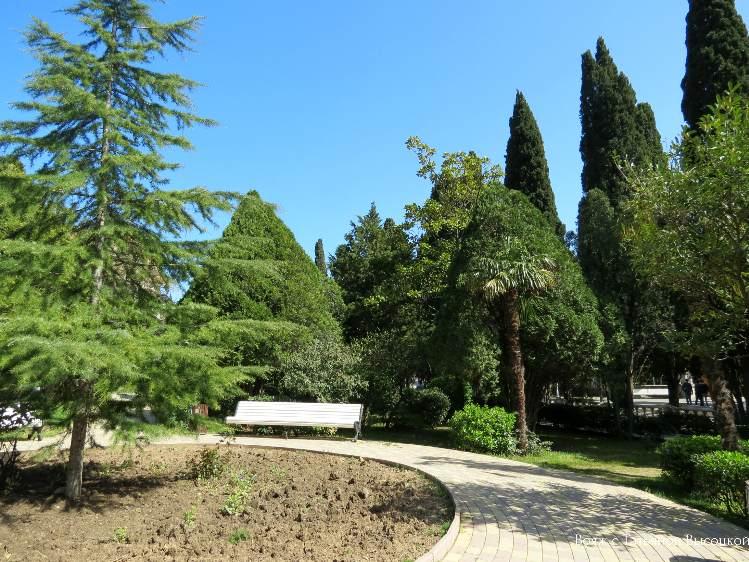 park v Simeize
