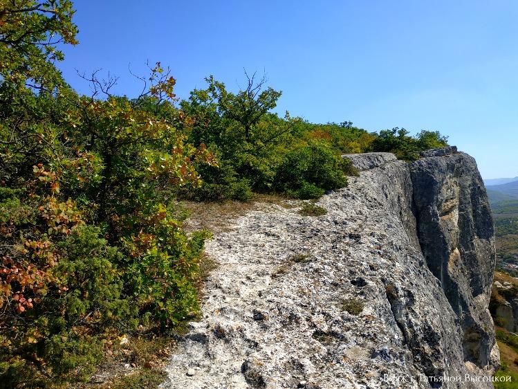 mozhzhevelnik-v-krymskih-gorah